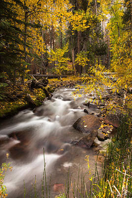Fall Colors Photograph - Sierra Nevada Fall by Peter Tellone