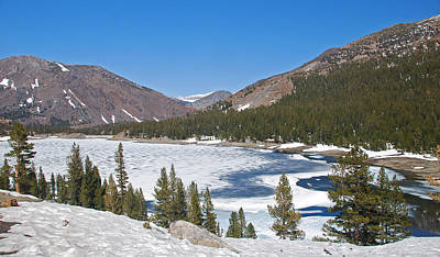 Photograph - Sierra Nevada Frozen Lake by Michael Gooch