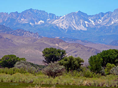 Photograph - Sierra Nevada Vista by Frank Wilson