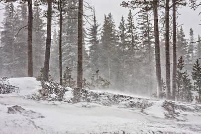 Impressionist Landscapes - Sierra Snow by Marc Crumpler