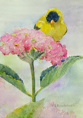 Painting - Siesta Atop The Hydrangea by Cynthia Roudebush
