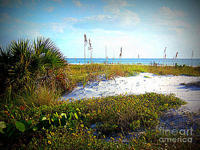 Photograph - Siesta Beach View by Lou Ann Bagnall
