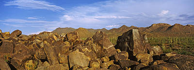 Tribal Art Photograph - Signal Hill With Petroglyphs, Saguaro by Panoramic Images