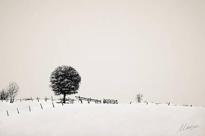 Silence Original by Marina Likholat