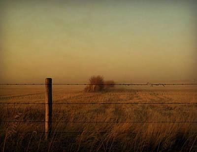 Photograph - Silence Of Dusk by Leanna Lomanski