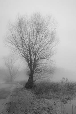 Photograph - Silence by Sara Hudock