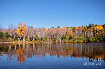 Photograph - Silent Lake 2 by Charline Xia