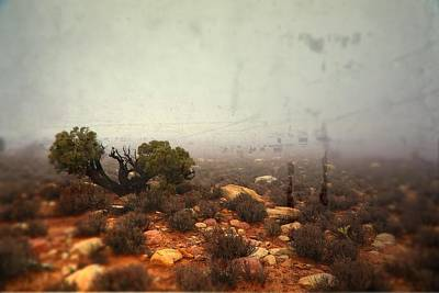 Photograph - Silent by Mark Ross