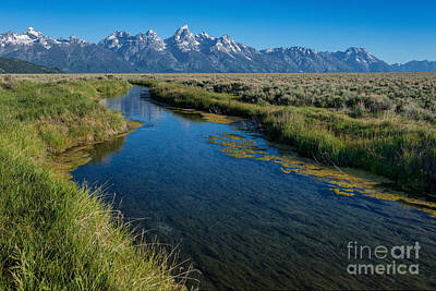 Silent Pathway To The Grand Tetons Art Print by Sandra Bronstein