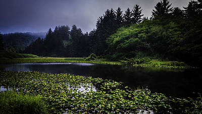 Photograph - Silent Pond by Dutch Ducharme
