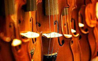 Music Photograph - Silent Violins by Maurizio Incurvati