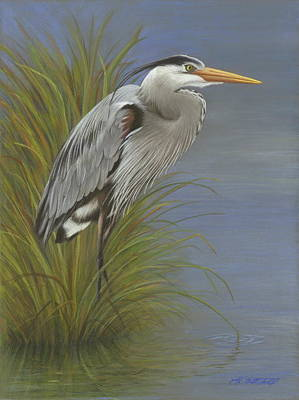 Egret Drawing - Silent Watch by Heather Mitchell