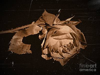 Photograph - Silently Sepia 2 by Chalet Roome-Rigdon