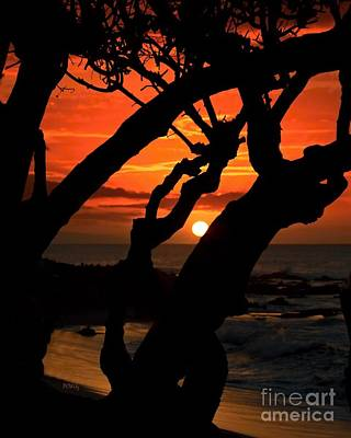Photograph - Silhouette Beach Sunset by Patrick Witz