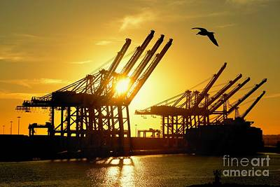 Photograph - Silhouette Container Dock by Patrick Witz
