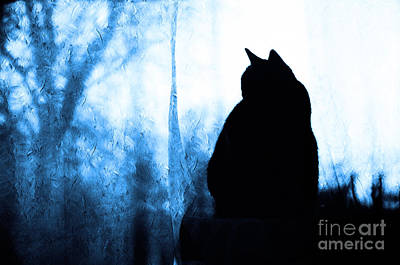 Andee Design Feline Photograph - Silhouette In Blue by Andee Design