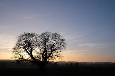 Photograph - Silhouette by Mark Severn