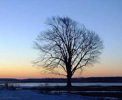 Photograph - Silhouette On A Winter Sunrise by Peggy King