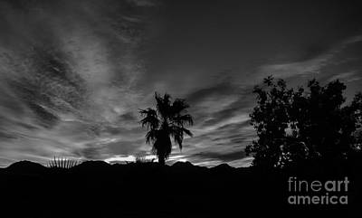 Photograph - Silhouette Sunrise by Robert Bales