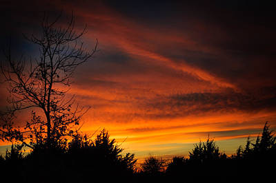 Color Contrast Wall Art - Photograph - Silhouette Sunset by Courtney S