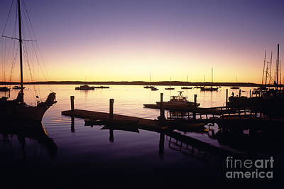 Photograph - Silhouetted Sailboats Morro Bay by Jim Corwin
