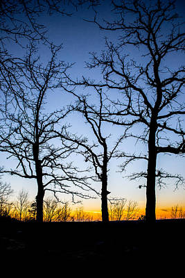 Photograph - Silhouettes At Sunset by Parker Cunningham