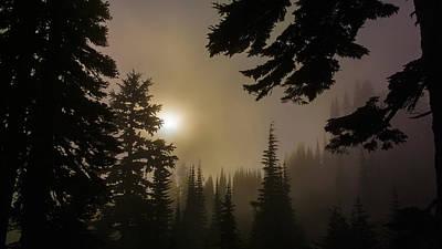 Silhouettes Of Trees On Mt Rainier II Art Print