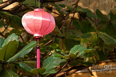 Photograph - Silk Lantern 05 by Rick Piper Photography