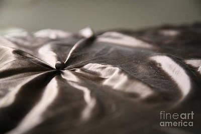 Photograph - Silk by Lynn England