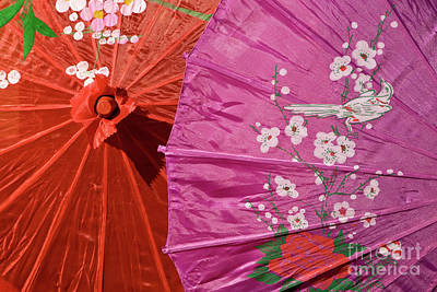 Photograph - Silk Parasols 02 by Rick Piper Photography