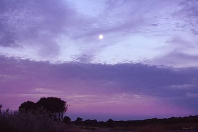 Photograph - Silken Moon by Amanda Holmes Tzafrir