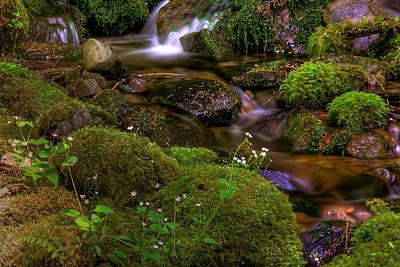 Babbling Photograph - Silky Cascades by John Absher