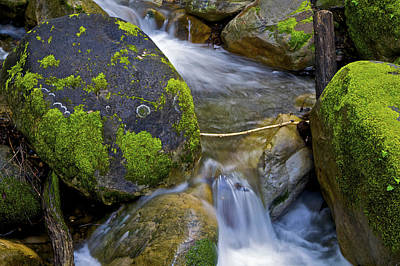 Photograph - Silky Stream Over Moss by SC Heffner