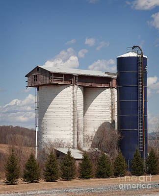 Silo House With A View - Color Art Print by Carol Lynn Coronios