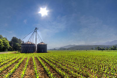Haybale Photograph - Silos by Debra and Dave Vanderlaan