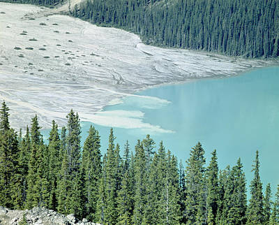 Photograph - 1m3531-silt Entering Peyto Lake by Ed  Cooper Photography