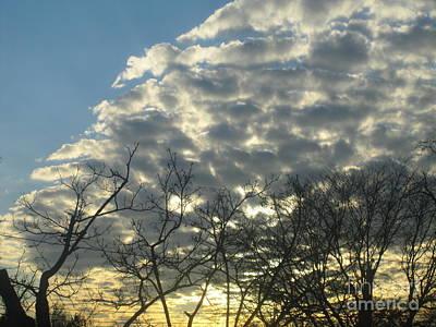 Photograph - Silver Clouds by Tara  Shalton