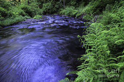 Photograph - Silver Creek by Stuart Gordon