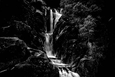 Photograph - Silver Fall by Edgar Laureano