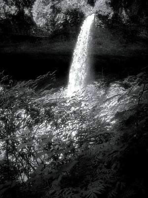 Photograph - Silver Falls Silver by Lora Fisher