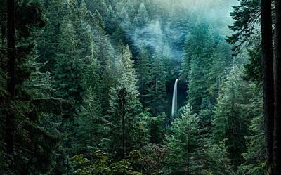 Photograph - Silver Falls State Park by Brian Bonham