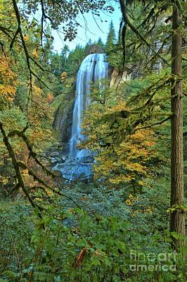 Photograph - Silver Falls Through The Trees by Adam Jewell