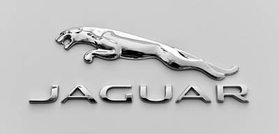Photograph - Silver Jaguar by Ronda Broatch
