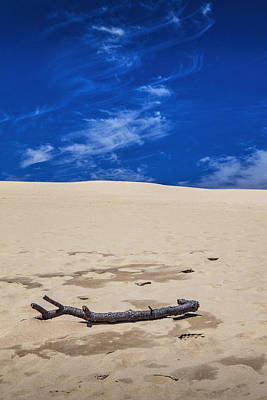 Photograph - Silver Lake Dune With Dead Tree Branch And Cirrus Clouds by Randall Nyhof