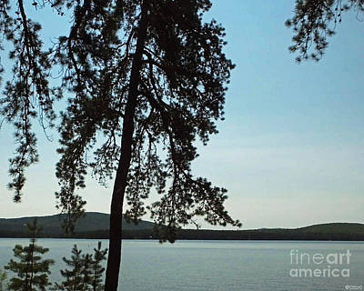 Photograph - Silver Lake West Ossipee New Hamphshire by Lizi Beard-Ward