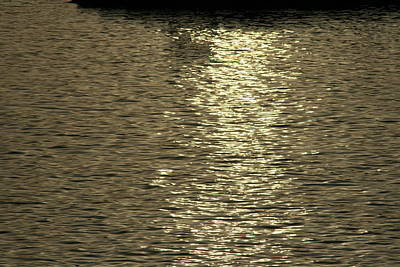 Photograph - Silver Moonlight Across The Water by Phoenix De Vries