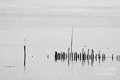 Outdoor Still Life Photograph - Silver Pond And Poles by Heiko Koehrer-Wagner