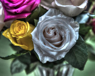 Hager Wall Art - Photograph - Silver Rose Hdr Creative by Greg Hager