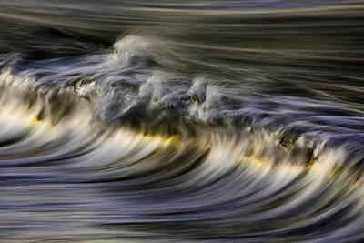 Photograph - Silver Sheen 73a3145 by David Orias