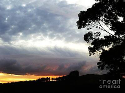 Photograph - Silver Spotted Sky by Dianne Connolly